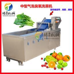 TS-X200供应果蔬消毒清洗机 臭氧去农残气泡洗菜机