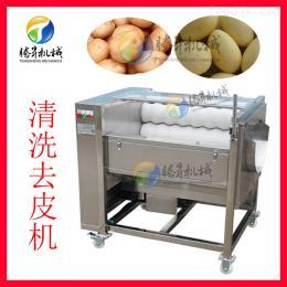 TS-M300小型去皮机 食店专用果蔬清洗去皮清洗机