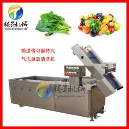 TS-X200多功能气泡洗菜机 粽叶/豆芽清洗机 厂家