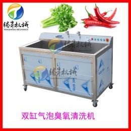 TS-B气泡式果蔬喷淋机木耳清洗机臭氧消毒洗菜机