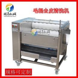 TS-M300毛辊式土豆脱皮机 马蹄 莲藕清洗机