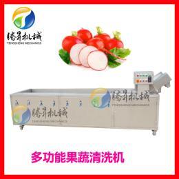 多功能叶菜洗菜机 气泡式火龙果人参清洗机