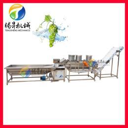 TS-X680海产品清洗风干线 药材清洗生产线