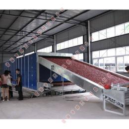 LJHJ-10000专业制造大型辣椒带式烘干设备 热风炉干燥机器注意事项 网带式蔬菜脱水机 价格