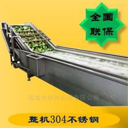HB3500ZQ冲浪式叶菜清洗设备 全自动脱盐清洗机