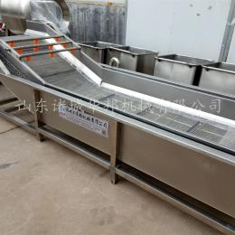 HB3500芸豆清洗机 蔬菜清洗设备 厂家直销