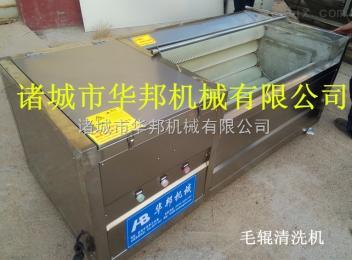 HB-1500毛辊式土豆清洗机/去皮机  胡萝卜清洗机  山药清洗机