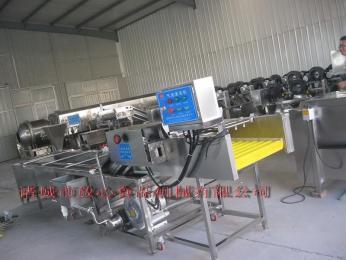 FX-600新疆甘草專用清洗機