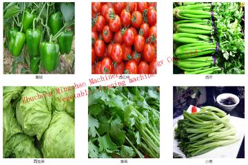 根茎类蔬菜清洗风干流水线