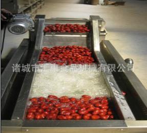 QX-6米蔬菜清洗機*翻浪清洗機*荔枝清洗機*果蔬清洗設備