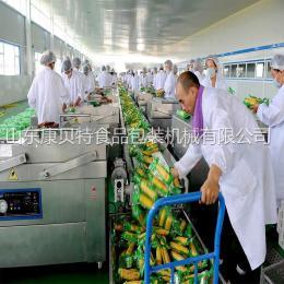 东北特产甜玉米半自动真空包装机 质量保障