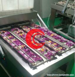 DZ-600型康贝 应重庆榨菜真空包装机|重庆酱菜真空机