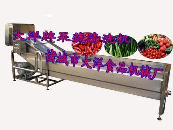 CQX-400气泡式蔬菜清洗机,翻浪式水果清洗机