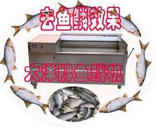 毛刷式去鳞机,自动鲜鱼脱鳞机