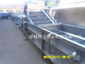 供用诸城瑞宝大型蔬菜气泡清洗机   QP-800型全自动果蔬清洗线