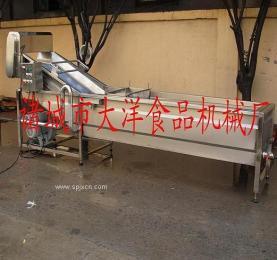 蔬菜清洗机 气泡清洗机 叶菜清洗机