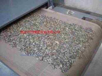 微波瓜子干燥設備