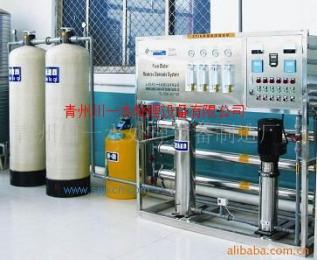 供應交鑰匙工程純凈水處理設備