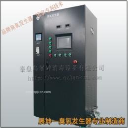 秦皇岛臭氧发生器