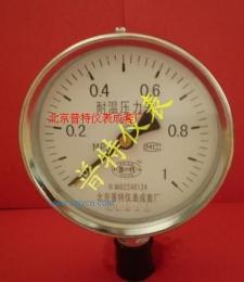 YTH100耐高温压力表