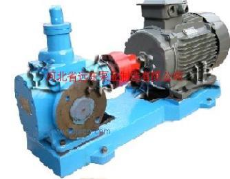 YCB圆弧齿轮泵,转子泵,稠油泵,机油泵,汽油泵