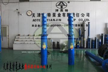 天津*热水潜水泵厂家