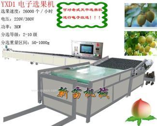 YXD1电子选果机(图二)