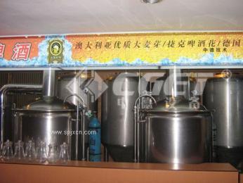 原浆啤酒自酿设备