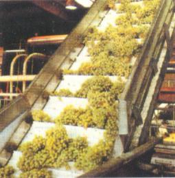 蔬果机械提升带