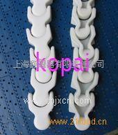 1701龙骨链塑料链条系列