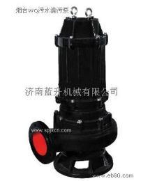 山东济南QW潜污泵