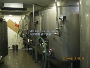 1000L自酿啤酒发酵罐