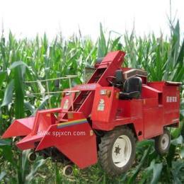 供應玉米收割機 玉米收割機型號 河北冀新玉米收割機廠家