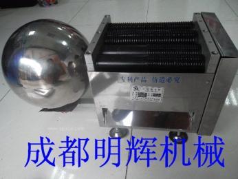 四川中药制丸机