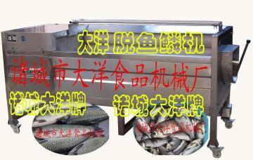 刮鳞机 脱鱼鳞机设备