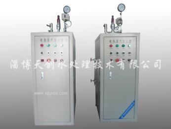 电加热蒸汽产生炉