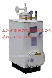 供应100kg/h爱墨科液化气气化器/液化气气化炉