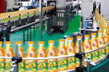 樱桃饮料生产设备