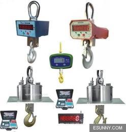 广东产100T电子吊钩秤,挂秤,不锈钢防爆称