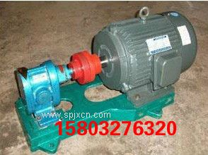 2CY-2.1/2.5齒輪油泵 食用油輸送泵