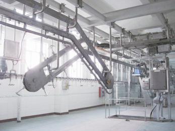 专业生产生猪屠宰设备及成套的流水线