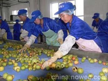 苹果浓缩汁生产线