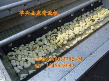 大型马铃薯去皮机  土豆去皮清洗机