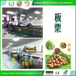 蔬菜速凍前處理自動生產線(以板栗為例,1-6噸