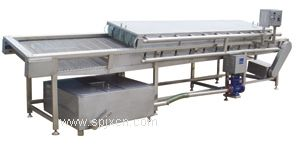 胡萝卜清洗机 根茎类蔬菜清洗机利特专业生产
