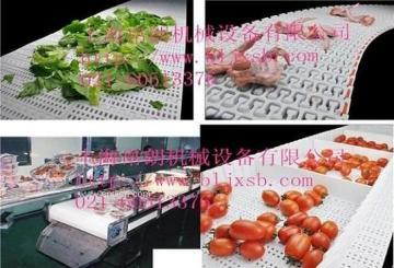 食品输送机塑料网带