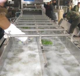 果蔬清洗流水线