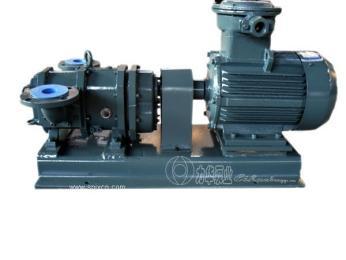 高粘度 不堵塞 浓浆泵转子泵-浓稠污水池泥浆处理