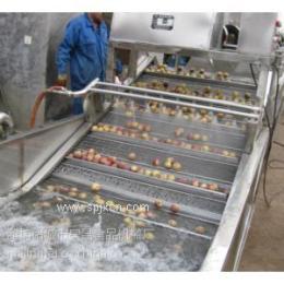 蔬菜清洗机 韭菜清洗机 大葱清洗机