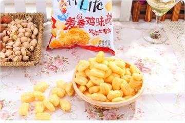 河南麦香鸡味块机器设备生产线